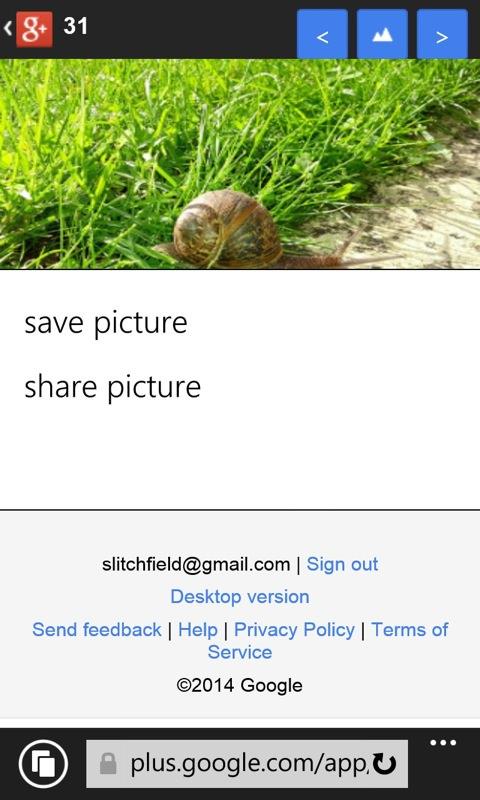 Screenshot, Windows Phone IE Favourites piece