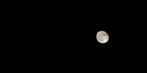 Moon shot/crop