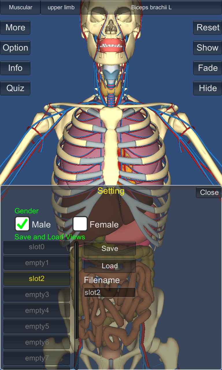 Screenshot, 3D Anatomy