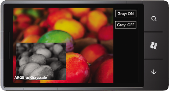 The Camera Grayscale Sample UI