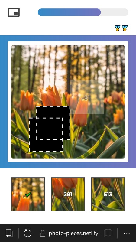 Photo Pieces screenshot