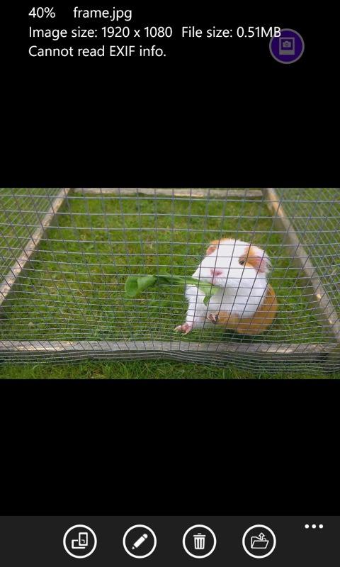 Frame Grabber screenshot
