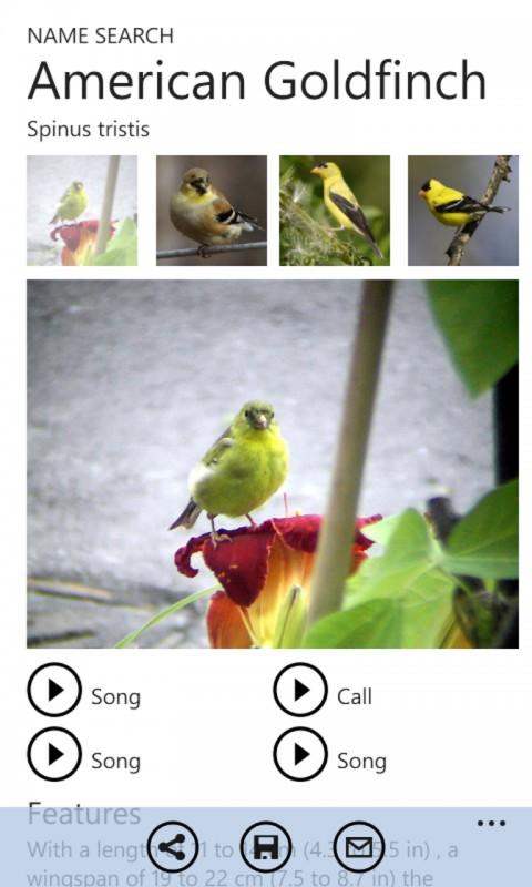 Twigle - Bird Identification